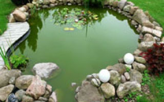 Декоративная отделка пруда на садовом участке