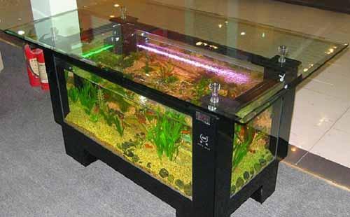 chto sdelat iz starogj akvariuma